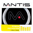 Mantis Power Polyester Tennis String- Set (Silver)