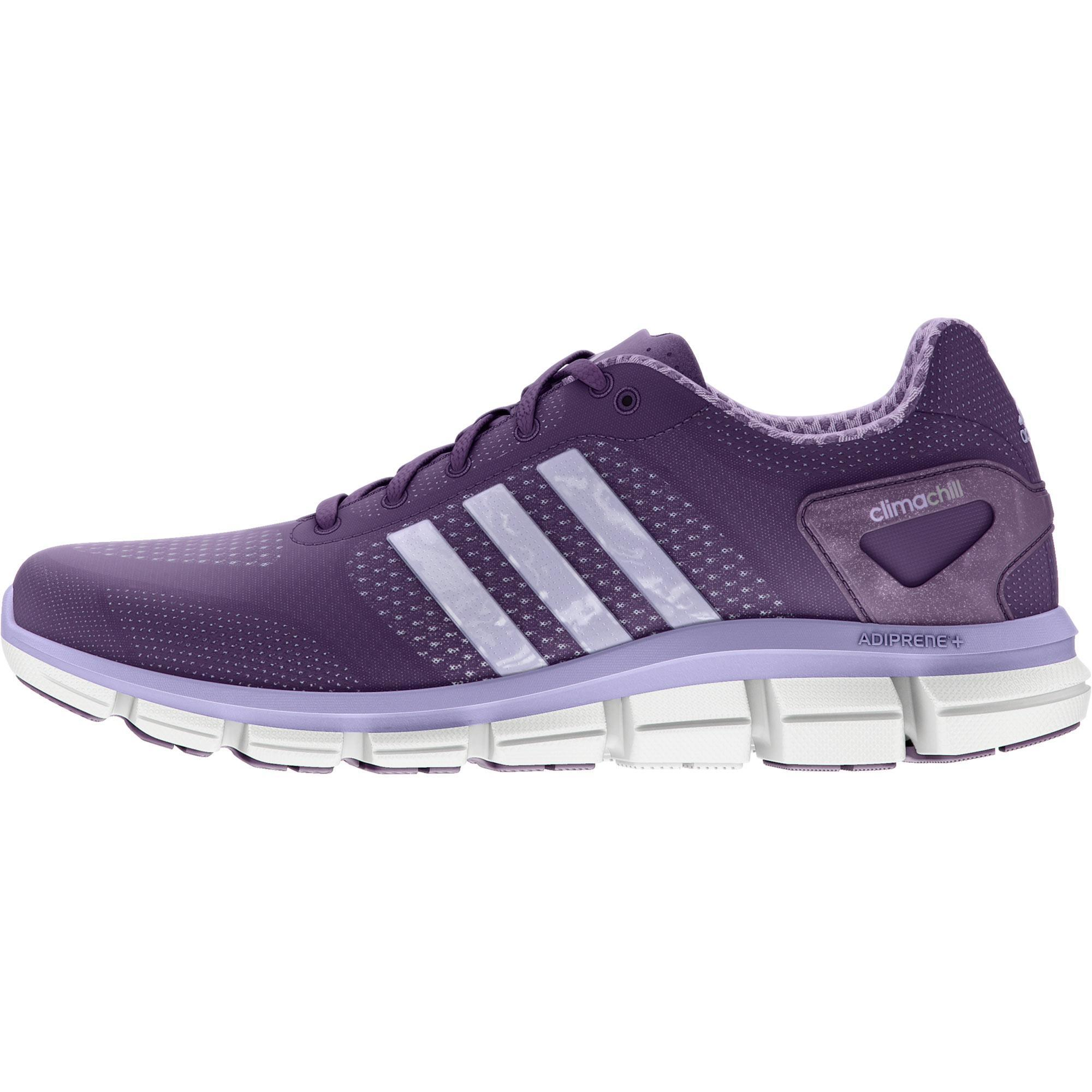the best attitude 490d0 1227f Adidas Womens ClimaCool Ride Running Shoes - Tribe Purple - Tennisnuts.com