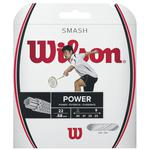 Wilson Smash 66 Badminton String Set - White