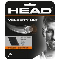 Head Velocity MLT Tennis String Set - Natural